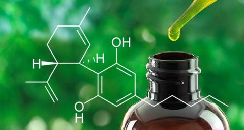 CBD oil UK BUY
